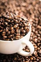 Brown coffee beans in white cup photo