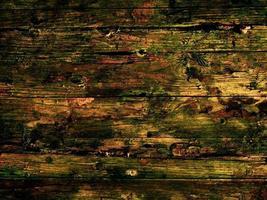 primer plano, de, árbol, corteza, de, fondo, o, textura foto