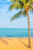 hermosa playa y mar con palmera