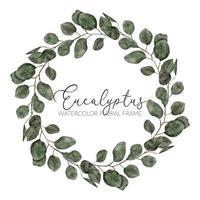 marco de corona de círculo de hoja de eucalipto acuarela