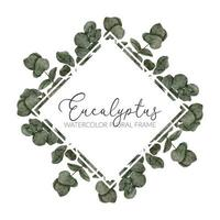ilustración de borde de marco de hoja de eucalipto acuarela