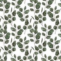 acuarela hoja de eucalipto de patrones sin fisuras