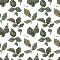 seamless pattern watercolor greenery foliage leaf vector