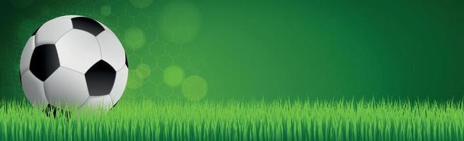 Realistic soccer ball on a green soccer lawn vector