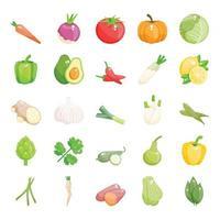 Winter Season Vegetables vector