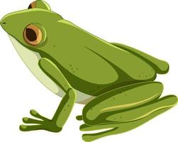 Green frog cartoon character isolated vector