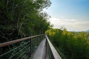 Puente de hierro colgante largo en un cañón