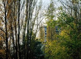 edificio detrás de los árboles foto