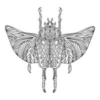 Goliath beetle linear coloring book illustration vector