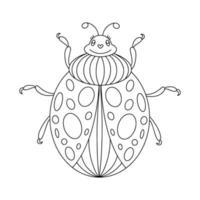 Ladybug linear coloring book illustration vector