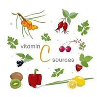 un conjunto de diferentes vegetales, frutas y plantas, fuentes de vitamina c. vector