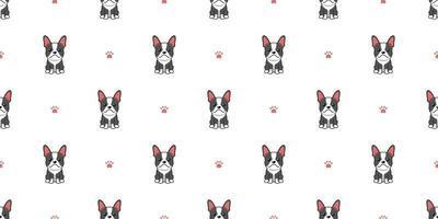 vector, caricatura, carácter, boston terrier, perro, seamless, patrón, plano de fondo