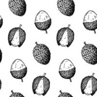 Hand drawn lychee fruit seamless pattern. Vector illustration in botanical sketch style