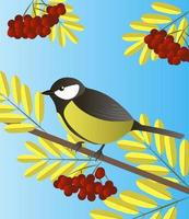 Vector illustration of a totmit sitting on a rowan branch