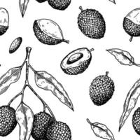 Hand drawn seamless pattern with lychee fruits, branches and leaves. Vector illustration in botanical sketch style
