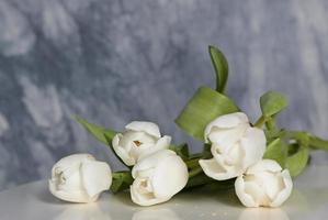 cinco tulipanes blancos en una mesa foto