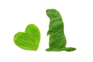 The silhouette of the animal is cut from green foliage on a white background photo