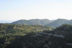 Landscape of a mountainous area with olive tree plantations photo