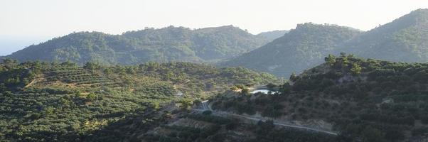 paisaje de una zona montañosa con plantaciones de olivos foto