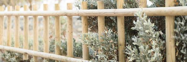 valla de madera decorativa y plantas de arbustos verdes blancos en ella foto