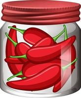 Chili in the glass jar vector