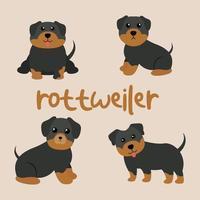 Cute Rottweiler Dog Set vector