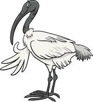 cartoon ibis bird comic animal character