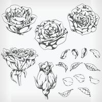 Silhouette Roses. Hand drawn Flowers Stencil Vector Drawing