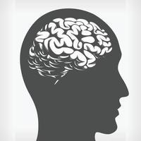 silueta del cerebro dentro de la cabeza humana, dibujo vectorial de la plantilla de perfil lateral vector