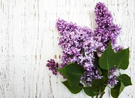 Lilac flowers on an old wooden background photo