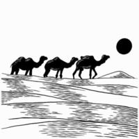 Hand drawn camels walk through the desert. Caravan going through the sand dunes isolated vector illustration. Camel caravan concept in vintage sketch in art retro engraved graphic style