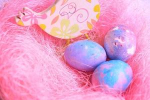 Easter eggs and chicken photo