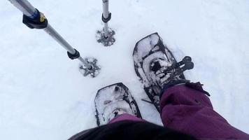 Snow shoes with poles in the snow photo