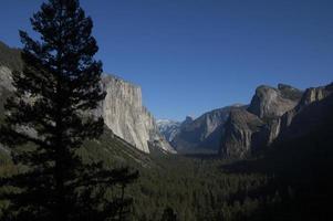 Looking across Yosemite Valley photo