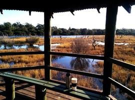 View of marshes in Western Australia photo