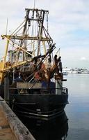Fishing trawler in a harbor photo