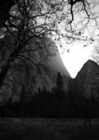 Yosemite National Park in black and white photo