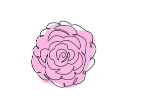 One continuous line drawing of Camellia flower with pink color. Beautiful blossoming flower, symbol of spring. Garden plant concept isolated on white background. Vector line art floral illustration