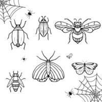 bosquejo de insectos. mariposa, abeja, araña, insecto. colección de vectores dibujados a mano.