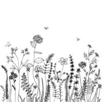 Black silhouette of grass, spikes, herbs and insect isolated on white background. Hand drawn sketch flowers. Can be used for printing on summer textiles and phone case. vector