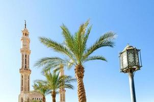 Minarets of the El Mustafa mosque with palm trees and lantern photo