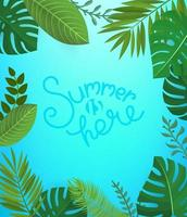 Floral background with lettering inscription. Summer is here vector