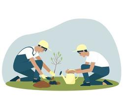 Gardeners are planting a deciduous tree seedling vector
