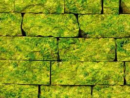 Close-up of green stone or rock wall for background or texture photo