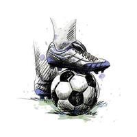 Los pies del jugador de fútbol pisan el balón de fútbol para el saque inicial sobre un fondo blanco. vector