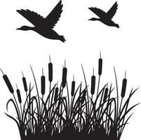 Flying ducks and reeds background silhouette vector illustration