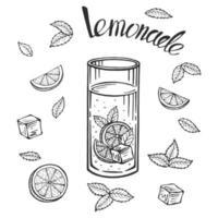 Glass jug with lemonade, sketch of homemade lemonade, summer  illustration. Hand drawn lemon, lemon slice, straw. The inscription on the lemonade. vector
