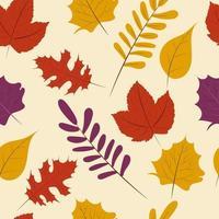 Autumn season, fall leaf seamless pattern background, vector illustration