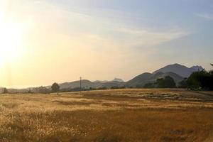 Open dry field at sunset in California valley