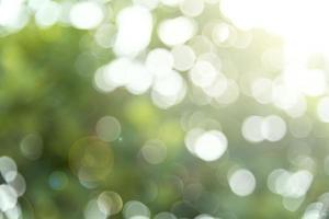 Green summer bokeh rays of light